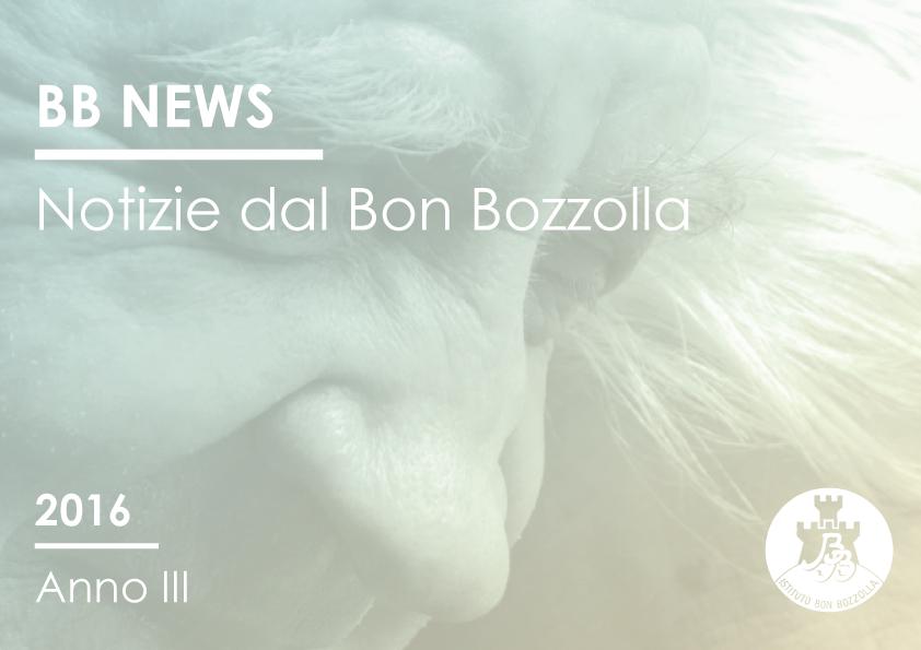 Raccolta BB News anno 2016
